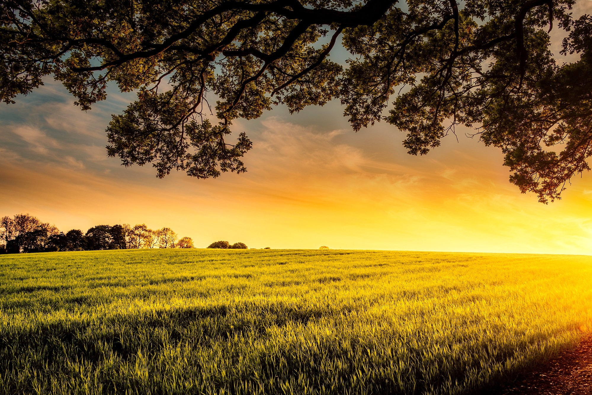 Thinking of Moving to the Countryside?